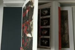 Libro d'artista Rosso endometriosi