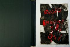 Libri d'artista Rosso endometriosi, prima di copertina